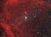 The Giant Squid Nebula