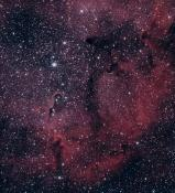 IC1396 Philippe Lousberg